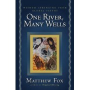 One River, Many Wells by Senior Lecturer in Classics Matthew Fox