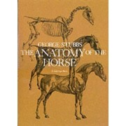 The Anatomy of the Horse by George Stubbs