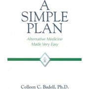 A Simple Plan by Colleen C Badell