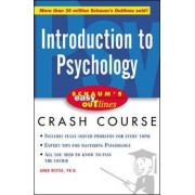 Schaum's Easy Outline of Introduction to Psychology by Arno F. Wittig