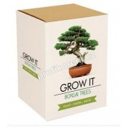 Grow it - Bonsai AKCE!!
