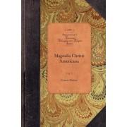 Magnalia Christi Americana, Vol 1 by Cotton Mather