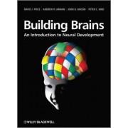Building Brains by David Price