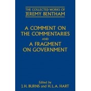 A Comment on the Commentaries and A Fragment on Government by Philip Schofield