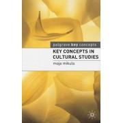 Key Concepts in Cultural Studies by Maja Mikula