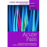 Clinical Pain Management: Acute Pain by Pamela E. Macintyre
