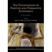 The Foundations of Positive and Normative Economics by Andrew Caplin