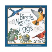 Birds, Nests & Eggs by Mel Boring