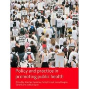 Policy and Practice in Promoting Public Health by Cathy E. Lloyd