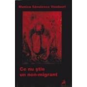 Ce nu stie un non-migrant - Monica Savulescu Voudouri