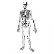 Learning Resources - Puzle del esqueleto (15 piezas)