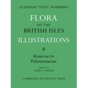 Flora of the British Isles: Rosaceae-Polemoniaceae Pt. 2 by A. R. Clapham