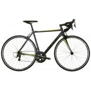 FOCUS Cayo AL Tiagra Bicicletta da corsa grigio XS / 48 cm Bici da corsa