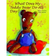 What Does My Teddy Bear Do All Day? by Bruno Hachler