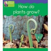 PYP L4 How Plants Grow by Richard Louise & Spilsbury Spilsbury
