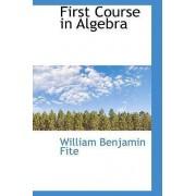 First Course in Algebra by William Benjamin Fite