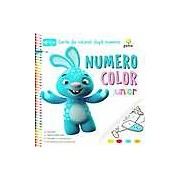 Numero Color Junior. Carte de colorat dupa numere