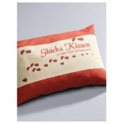 Himmelgrün Glückskissen, ca. 30x20cm Himmelgrün rot