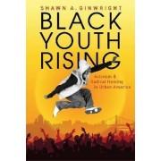 Black Youth Rising by Shawn A. Ginwright