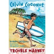 Trouble Magnet by Graham Salisbury