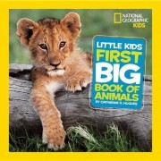 Little Kids First Big Book of Animals by Catherine D Hughes