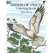 Birds of Prey Coloring Book by John Green