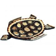 Orientalna taca żółw duża Indonezja