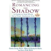 Romancing the Shadow by Connie Zweig