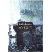 No Exit - Ofelia Prodan