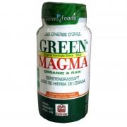 Green Magma poudre de jus d'herbe d'orge Celnat 136 comprimés