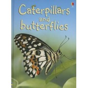 Caterpillars and Butterflies by Stephanie Turnbull