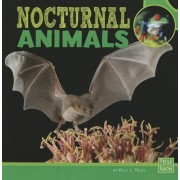 Nocturnal Animals by Kelli L Hicks