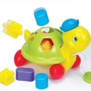 Pull Along Shape Turtle by Fun Time