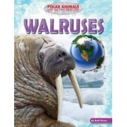 Walruses by Ruth Owen