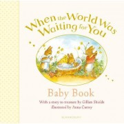 When the World Was Waiting for You Baby Book by Gillian Shields
