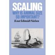 Scaling by Knut Schmidt-Nielsen