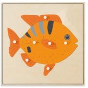 Зоологически пъзел: Риба