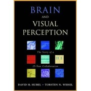Brain and Visual Perception by David H. Hubel