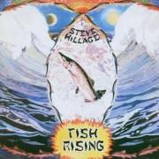 Steve Hillage - Fish Rising (0094637341520) (1 CD)