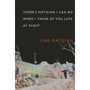 There's Nothing I Can Do When I Think of You Late at Night by Naiqian Cao