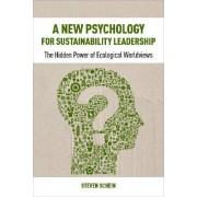 A New Psychology for Sustainability Leadership by Steve Schein
