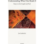 Understanding What One Reads: Essays on the Gospels and Paul (2003-2011) II by J. Lambrecht
