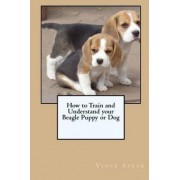 How to Train and Understand Your Beagle Puppy or Dog by Vince Stead