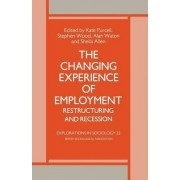 The Changing Experience of Employment by Alan Waton