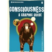 Introducing Consciousness by David Papineau