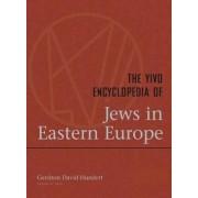 The YIVO Encyclopedia of Jews in Eastern Europe by Gerhon David Hundert