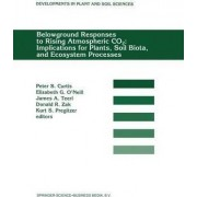 Belowground Responses to Rising Atmospheric CO 2 by Peter S. Curtis