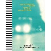 Memories That Smell Like Gasoline by David Wojnarowicz