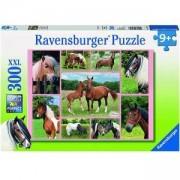 Пъзел 300 части - Коне - Ravensburger, 700945