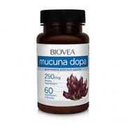 MUCUNA DOPA 250mg 60 Vegetarian Capsules